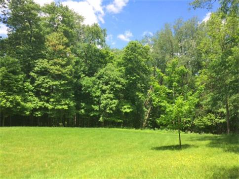 2.911 Acres Gambier Road Mount Vernon Ohio 43050