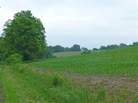 39.848 Acres Snively Road Danville Ohio 43014