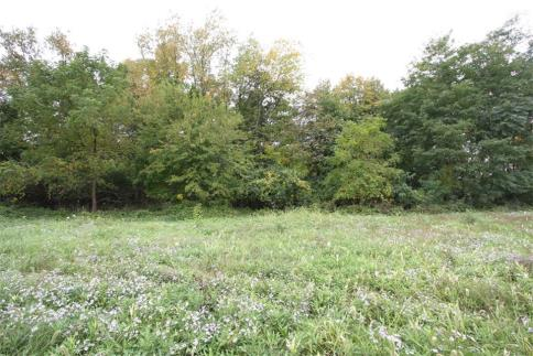 83.955 Acres New Delaware Road Mount Vernon Ohio 43050
